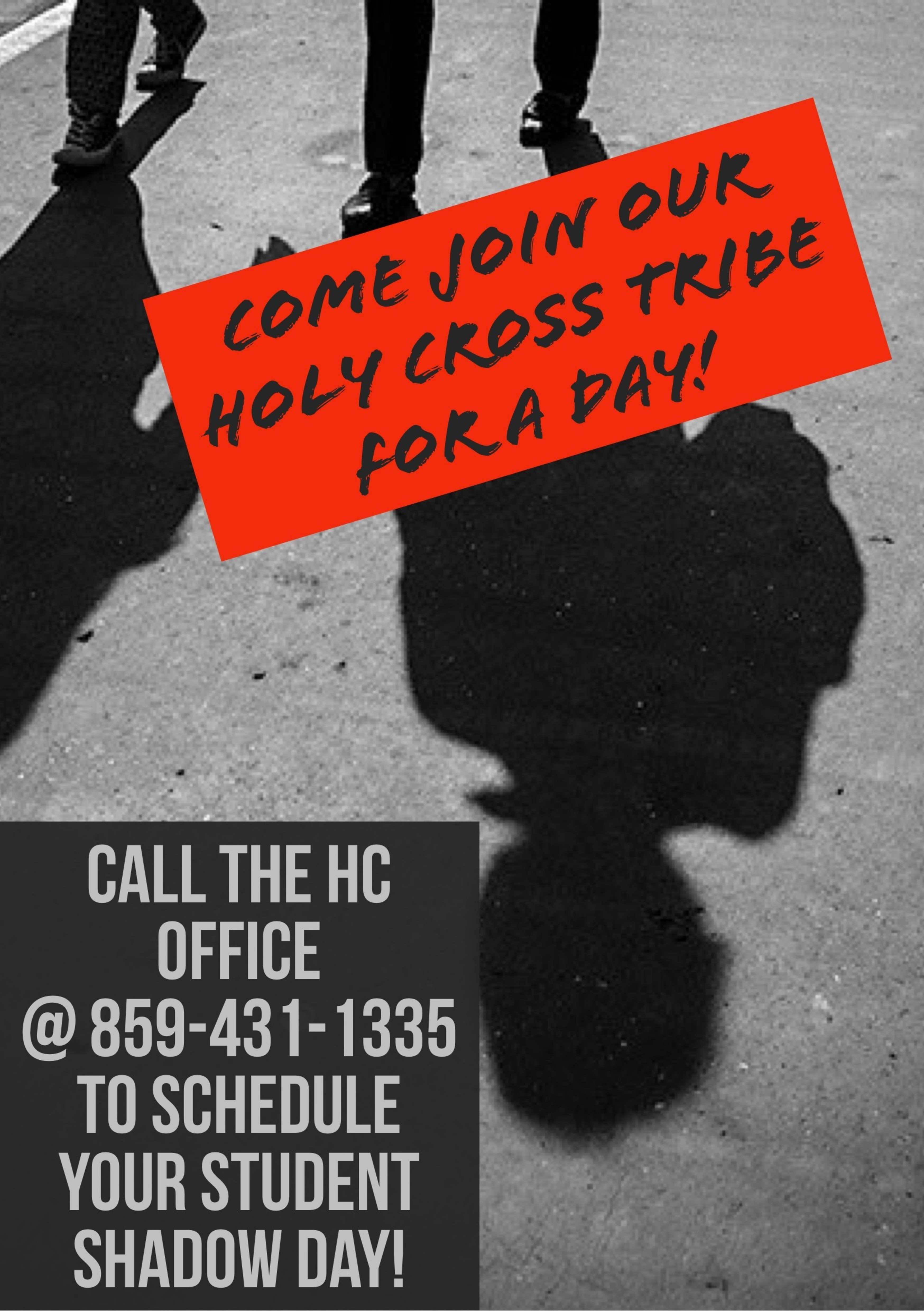 Holy Cross Wants You!